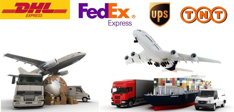 Dịch vụ chuyển hàng xách tay từ Hà Nội đi Tampa chuyển nghiệp hàng đầu